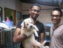 Animals For Adoption – 18 April 2012