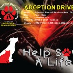 MDDB PENANG ADOPTION DRIVE ON 3RD MARCH AT JURU AUTO-CITY