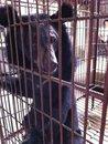 Updates On 12th Jan 2012