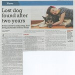 Lost Dog Found After Two Years By Judith Tan, The New Paper