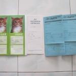 Kenapa Kucing Perlu Vaksinasi?