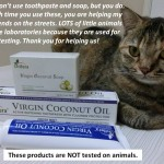 Virgin Coconut Oil Toothpaste – 18 Tubes Left To Go!