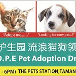  H.O.P.E Pet Adoption Drive