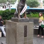 A Visit To Shibuya Train Station (Hachiko's Station)!