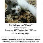 Photos Of SPCA Selangor, Malaysia