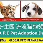 希望护生园流浪猫狗领养日 H.O.P.E Pet Adoption Drive