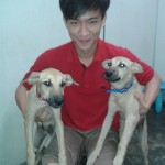 2 Female Puppies Adopted! (Adeline Khaw Bee Yan's)