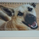 Mongrels Of The World Calendar 2014 Now Available…