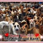 感恩 Thank You The Kiko Food Bank