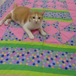 Polka Pink For Mom (Blanket No. 39) – Up For Auction!