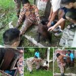Kudos To Our Jabatan Bomba Dan Penyelamat!!
