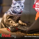"KindMeal.my Is Seeking ""Animal Welfare Warriors""!!"