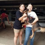Valentine Is Adopted! (Jessy Lian's)