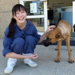 Director Of Animal Shelter Commits Suicide Over Euthanasia Guilt