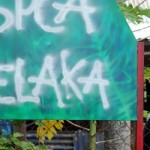 Dog Owners Seek Malacca SPCA's Help