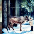 Beautiful Bond of Children & Animals