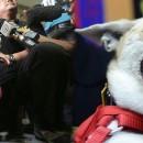 Kabang, Philippine's Hero Dog Loses Snout Saving Owner