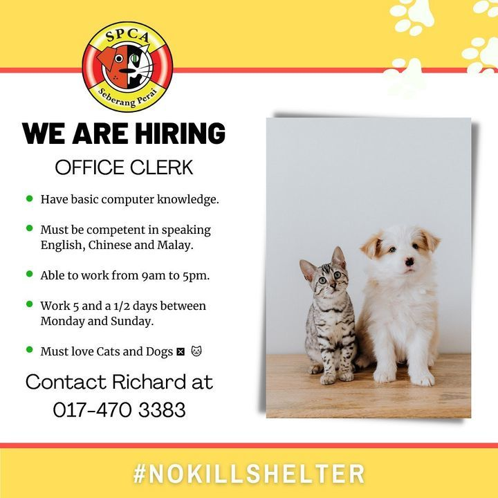 We Want You To Join Our Pawfect Family. Feel Free ..