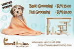 Small Breed Grooming Promo -