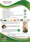 Power Green Bio Supplement Vitamin Powder For Cat And Dog -