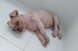 Cute Grace sleeping